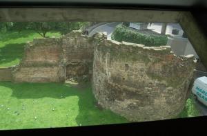 Roman wall/pigeon spotting